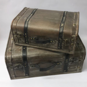 Cases and Trunks